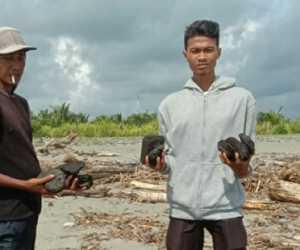 Aktivis Lingkungan Temukan Batu Bara Berserakan di Pantai Meureubo