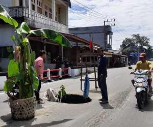 Jalan Lintas Provinsi Berlubang dan Ancam Keselamatan, Warga Tanam Pohon Pisang