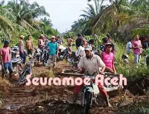 Diklaim Milik Desa, 500 Hektar Lahan HGU PT. GSM Diambil Alih Warga