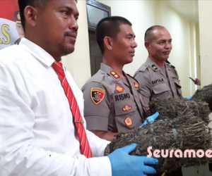 Dua Pria Diduga Pengedar Narkoba di Tangkap Polres Nagan Raya
