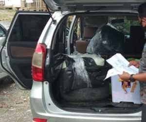 Polres Nagan Raya Temukan Ganja Seberat 30 Kilogram Di Krueng Isep
