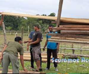 KPH Wilayah IV Aceh Amankan 4,5 Meter Kubik Kayu Ilegal di Nagan Raya