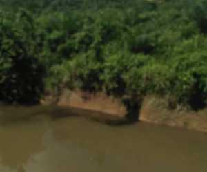 Diduga Buang Limbah ke Sungai, Mill Menager PT. BSP: Itu Bukan Limbah