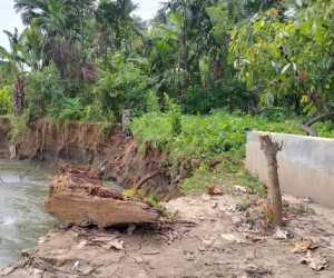 Erosi Krueng Susoh, Abdya Ancam Rumah dan Kebun Warga