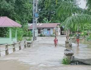 Banjir Landa Nagan Raya, Beberapa Warga Mulai Mengungsi