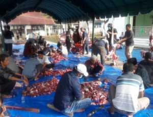 PC Muhammadiyah Manggeng, Abdya Sembelih 13 Ekor Kerbau dan 20 ekor Kambing Qurban