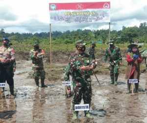 Dalam Rangka HUT TNI ke 75, Kodim 0115/Simeulue Tanam 500 Mangrove
