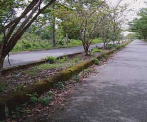 Median Jalan di Komplek Perkantoran Suka Makmue Rusak Parah