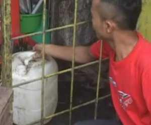 Aksi Pencuri Menyak Goreng di Nagan Raya Terpantau CCTV