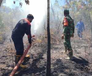 Petugas Damkar Bersama TNI Padamkan Kebakaran Lahan dan Hutan di Aceh Jaya