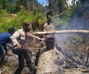 Lahan Warga Terbakar, Personil Polsek Panga Padamkan Api
