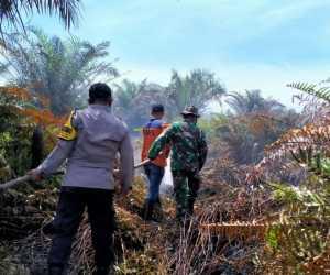 Kebakaran di Kayee Lhoen Aceh Jaya Masih Berpotensi Menyala
