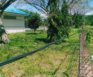 Kabel Listrik di Abdya Dikhawatirkan Mengancam Keselematan Warga