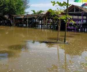 Jelang Gerhana, Air Pasang Hantam Pesisir Laut Pidie Jaya