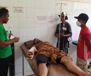 Diamuk Gajah Liar, Asisten CRU Dilarikan ke Rumah Sakit