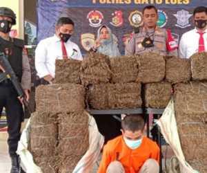 12 Bal Ganja Kering Seberat 110-Kg Ditemukan di Gudang