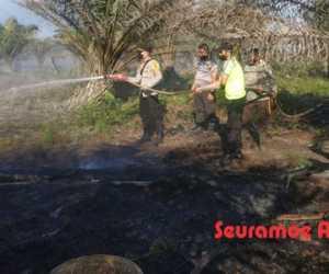 Kemarau Tiba, Kebun Sawit Warga Terbakar di Nagan Raya