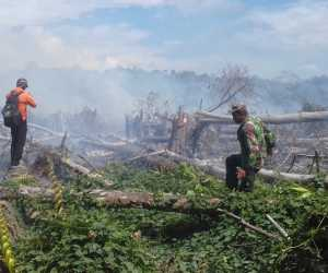 BREAKING NEWS: 10 Haktar Lahan Gambut Terbakar di Aceh Jaya