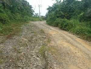Jalan Penghubung Simpang Jaya-Alue Supeung Sudah 10 Tahun Rusak