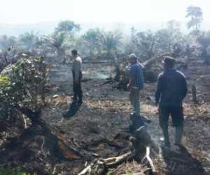 Kapolsek Kuala Batee Tinjau Lokasi Kebakaran Lahan Warga di Abdya