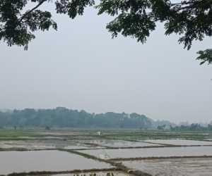 Kabut Asap Karhutla Riau Mulai Selimuti Wilayah Abdya