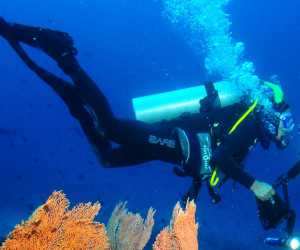 """Aceh International Diving Festival and Championship"" Akan Digelar di Sabang"