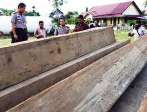 Komplotan Illegal Logging, Dibekuk Tim Polres Aceh Timur