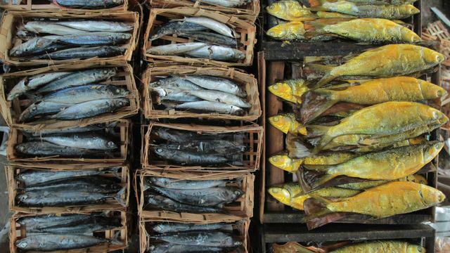 Ternyata Konsumsi Ikan Asin Dapat Picu Kanker Nasofaring! Berikut Penjelasannya