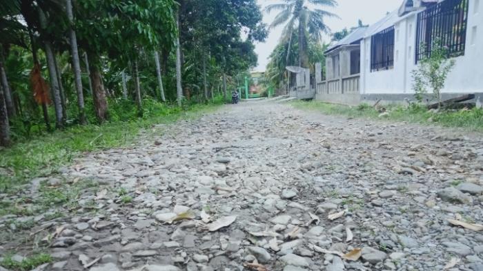 Kondisi Jalan Lintas Zona Pendidikan dan Pertanian di Manggeng Abdya Memprihatinkan