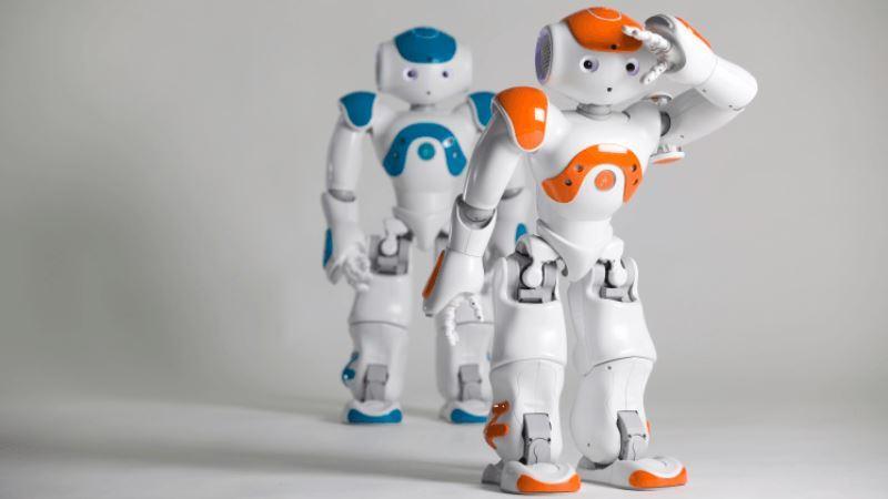 Robot Mulai Jadi Pemandu Wisata Di Jepang, Yok Lihat Aksinya